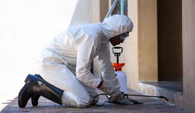 Dedetização em Casa – Serviços de controle de pragas rápido e sem cheiro