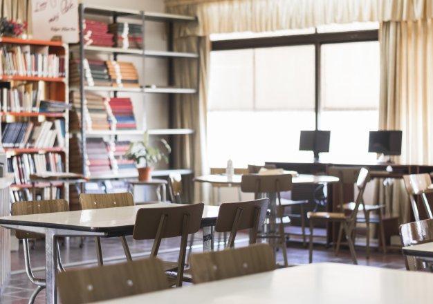 Controle de Pragas em Escolas: aproveite as férias escolares para efetuar o serviço