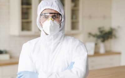 Dedetização para empresas: garanta um controle de pragas contínuo