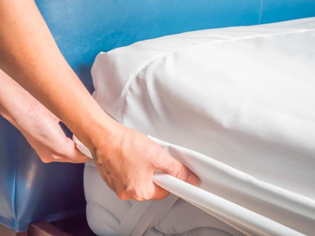 Detalhes sobre o Percevejo de cama