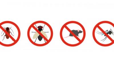 O combate ao coronavírus deixou a dengue em segundo plano