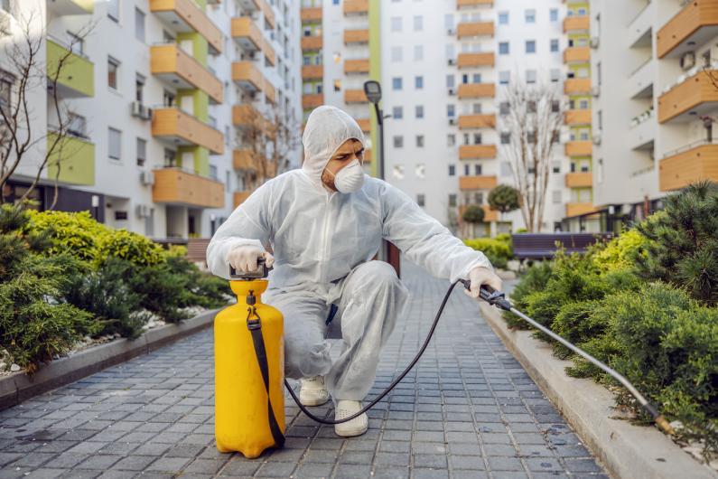 Dedetização para condomínios: proporcione proteção nas áreas comuns