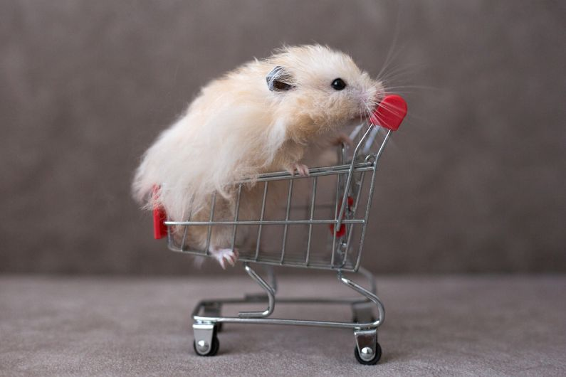 Dedetização para supermercados: evite surpresas na prateleira do seu estabelecimento